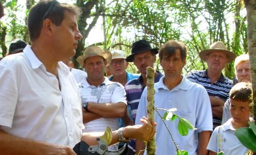 Secretaria da Agricultura de Cruz Machado promove dia de campo