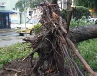 Chuvas com vento trás prejuízos em toda a região