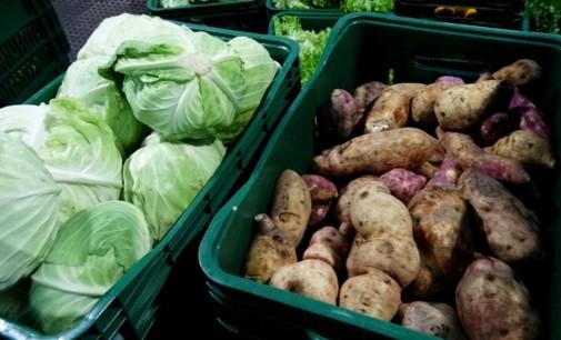 Programa de Alimentos beneficia agricultores