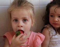 Merenda Escolar de Bituruna oferece morangos frescos