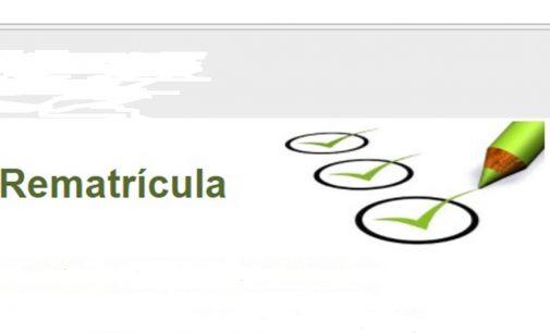 Estão abertas as rematrículas nas escolas de Santa Catarina