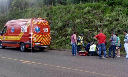 Motociclista fica ferido após atingir um veado na SC 135