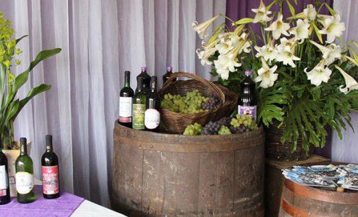 Festa de Bituruna destacou a qualidade da boa uva