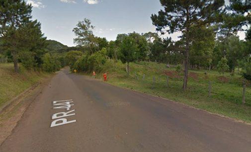 Madeira é furtada na PR 447 em Cruz Machado