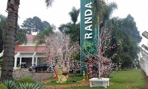 Empresa Randa de Bituruna faz um Osterbaum