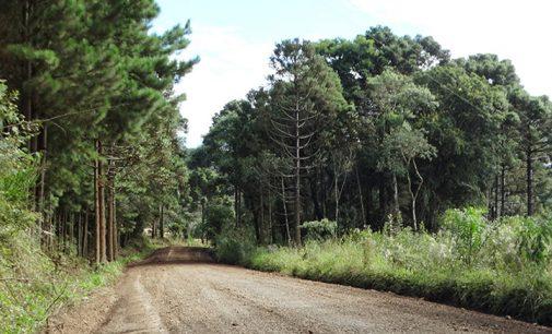 Estradas rurais de Cruz Machado são recuperadas