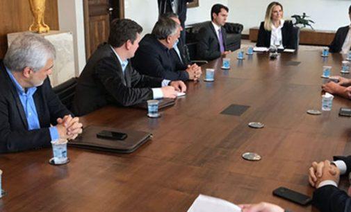 Prefeitos da Amsulpar reúnem-se com a Governadora Cida Borghetti