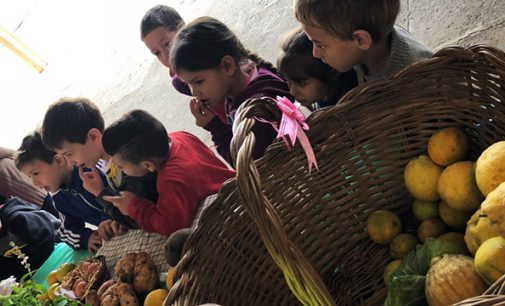Alimentação saudável é tema nas escolas de União da Vitória