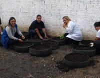 É feita Horta medicinal em pneus no bairro Bela Vista
