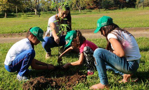 Alunos e SEMMA plantam árvores no Parque Ambiental