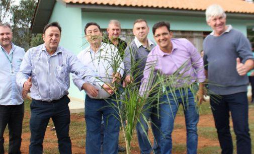 Cohapar entrega casas em Porto Vitória