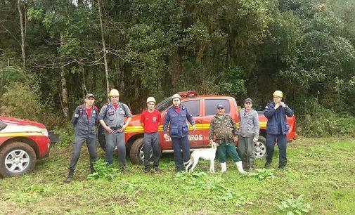 Bombeiros salvam cão no interior de Irineópolis