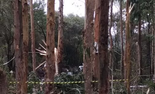 Testemunha relata o que ouviu e viu do acidente que deixou três mortos