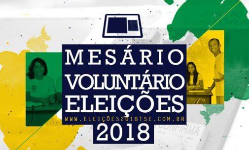 Seja um Mesário Voluntário nas Eleições 2018