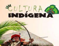 Alunos de Bituruna buscam resgatar cultura indígena da cidade