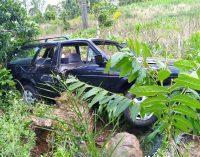 Mulher morre em acidente na PR 447 em Cruz Machado