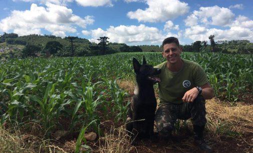 Cão de busca Kira, recebe certificação internacional