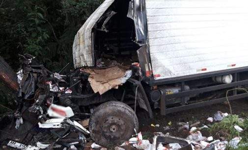 Caminhão de leite sai de pista e motorista morre na BR 153