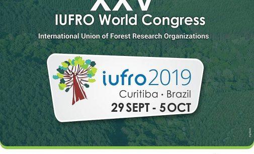 Embrapa convida equipe de Bituruna para o XXV congresso mundial da IUFRO