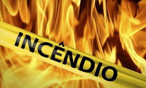 Incêndio atinge área de plantação de pinus em Bituruna