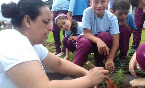 Plantando flores e revitalizando o espaço escolar em General Carneiro