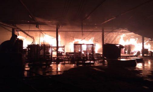 Incêndio atinge estufa da Empresa Santa Catarina