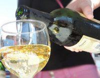 Bituruna divulga programação da 11ª Festa do Vinho