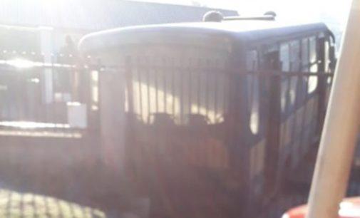 Homem morre após ser atropelado por um ônibus em General Carneiro