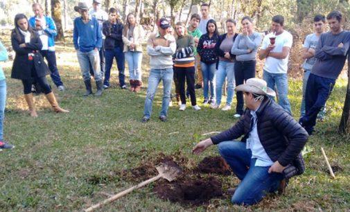 Plantio de Erva-Mate é tema de encontro com agricultores