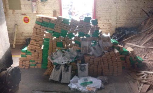 Drogas apreendidas em Irineópolis são destruídas