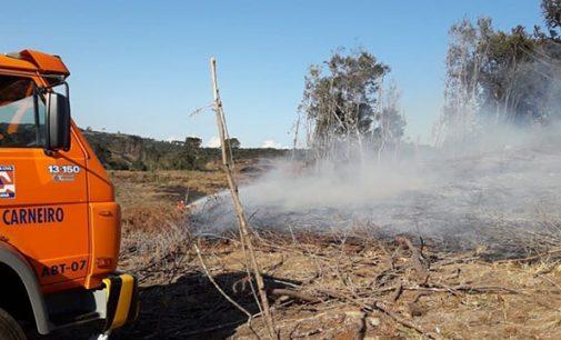 Homem morre em incêndio florestal em General Carneiro
