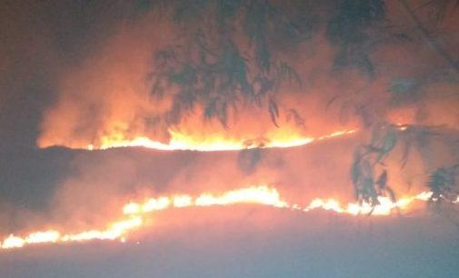 Bombeiros registram mais dois incêndios em vegetação em General Carneiro