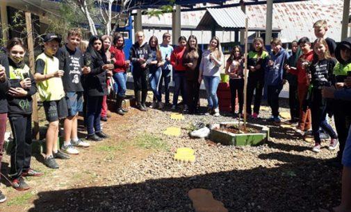 Colégio do Campo Helena Kolody, adere ao Programa Paraná Mais Verde