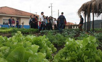 """CFR realiza """"Mostra de Curso Técnico"""" em Agropecuária"""