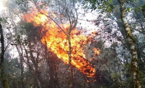 Incêndio atinge mata no bairro São João em General Carneiro