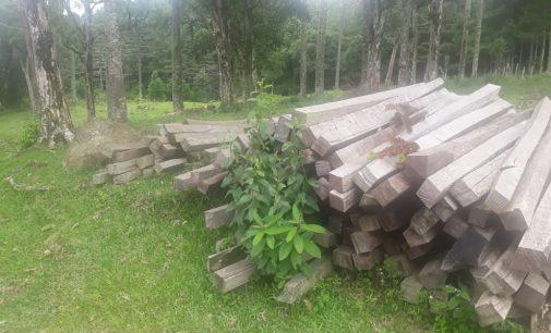 PMA apreende madeira cortada ilegalmente em Mallet