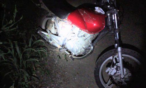 PM localiza motocicleta furtada em plantação de pinus
