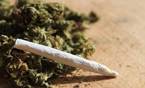 Jovem é detido por posse de drogas em União da Vitória