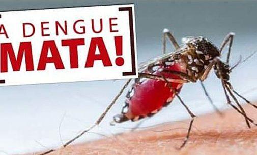 Porto União confirmado primeiro caso de Dengue