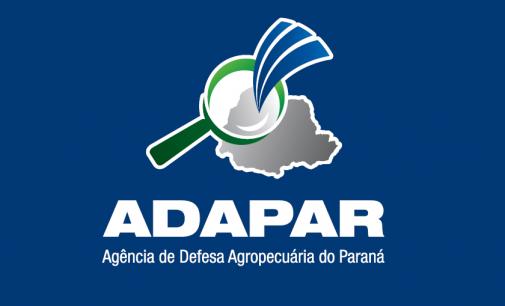 Governo do Paraná adia concurso público da Adapar