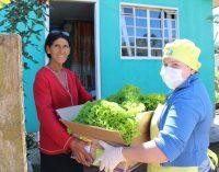 Bituruna: 64 famílias foram beneficiadas pela Ecofeira